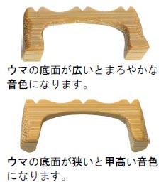 ウマ2種類.jpg